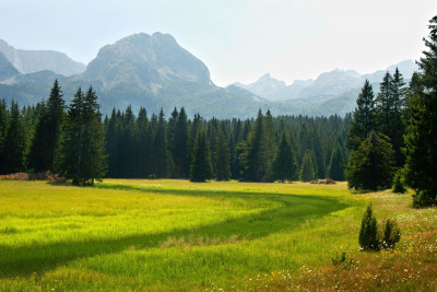 Durmitor valley